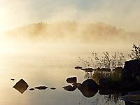 Oktober 2020 - Morgennebel