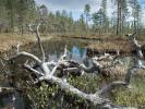 Pielpajärvi, Finnland