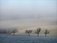 Bild 01 - In einem kühlen Grunde