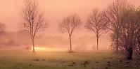 Bild 14 - Morgennebel